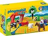 Playmobil 6963 - Streichelzoo